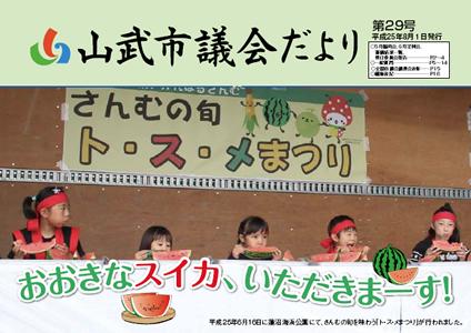 第29号 平成25年8月1日発行