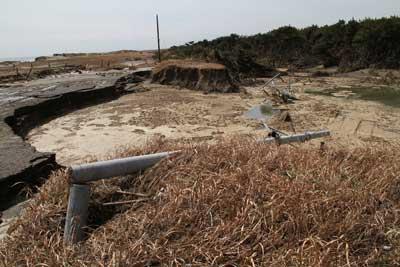 津波によりアスファルトがえぐられ、電柱も折れ曲がっている海岸